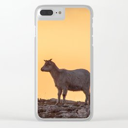 Goat baby sunset E5-5789 Clear iPhone Case