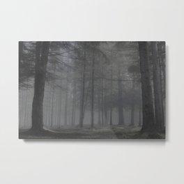 Creepy forest - North Kessock, Highlands, Scotland Metal Print