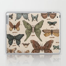 Butterflies and Moth Specimens Laptop & iPad Skin