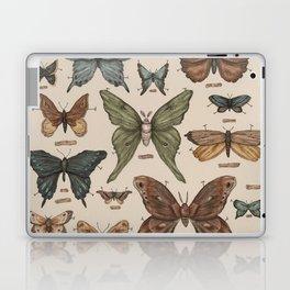 Butterflies and Moth Specimens Laptop & iPad Skin