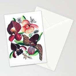 Orchid Cafe Stationery Cards