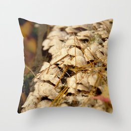 2015-10-23 - 0009 Throw Pillow