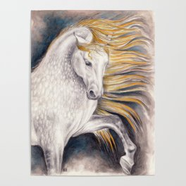 Andalusian Dapple Horse Watercolor Poster