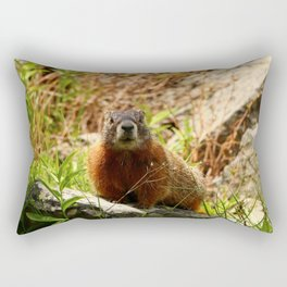 Marmot On A Rock Rectangular Pillow