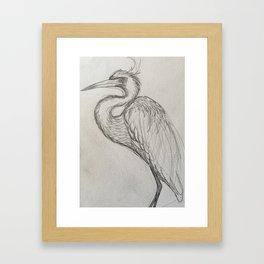 Bird drawing Framed Art Print