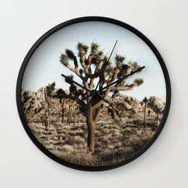 Joshua Tree National Park at Sunset Wall Clock