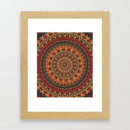Mandala 563 Framed Art Print