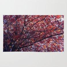 Under the trees - Autumn Rug