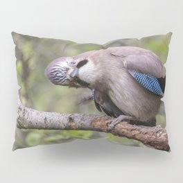 Curious beautiful Jay bird Pillow Sham