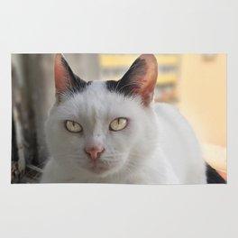The Cat Rug