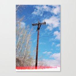 telephone pole (spring 2015) Canvas Print