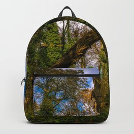 Forest guard Backpack