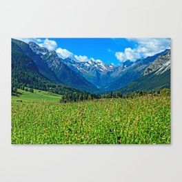 Bergwiese mit Talschluss Canvas Print