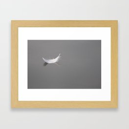 Swan feather drifting on the river Framed Art Print