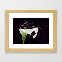 Iniuria Framed Art Print