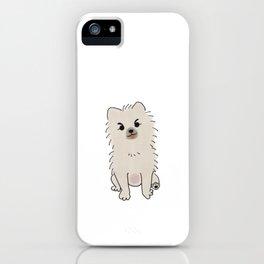Puna iPhone Case