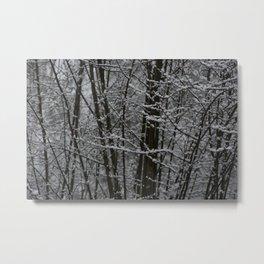 Snowy Day 2 Metal Print