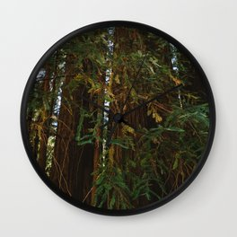 Redwood Forest V Wall Clock