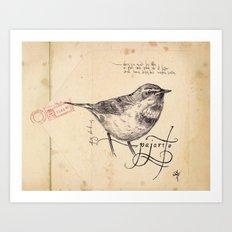 Bird 01 Art Print