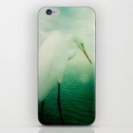 White Egret iPhone Skin