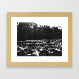 IMG 0137 Framed Art Print