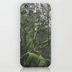 Moss Covered Trees Slim Case iPhone 6s