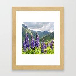 Mountain Lavender   Oil Painting Framed Art Print
