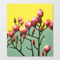 Magnolia Branch Canvas Print