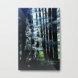 illuminate Metal Print
