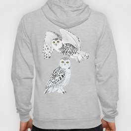 Snowy Owls on a Snowy Day - Teal Background Hoody