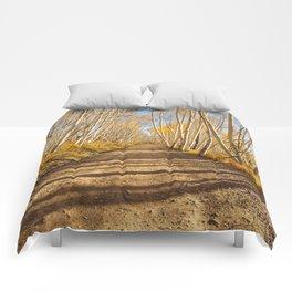 FALL ROAD COLORADO AUTUMN PHOTOGRAPHY Comforters