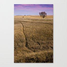 The Golden Path Canvas Print