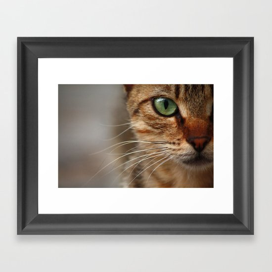 Cat Framed Art Print