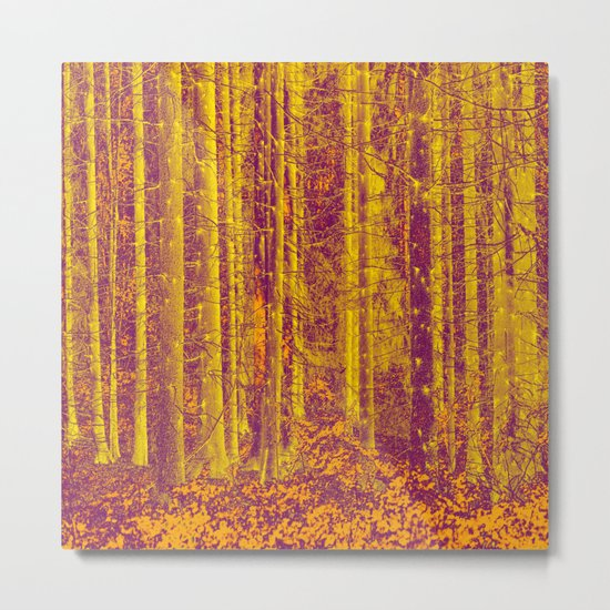 In the middle of the forest Metal Print