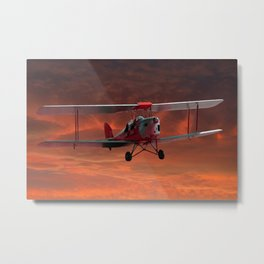 Two Seater Tigermoth Metal Print