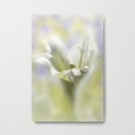 the beauty of a summerday -82- Metal Print