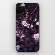 Small treasures iPhone & iPod Skin