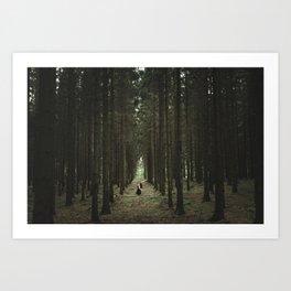 The Woods of St Olof Art Print