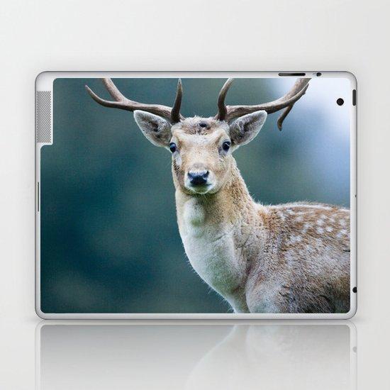 FALLOW DEER Laptop & iPad Skin