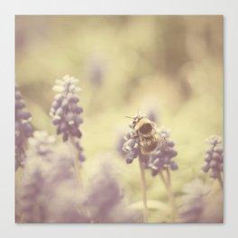 busy buzzy bumble bee ... Canvas Print