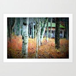 Ashokan Art Print