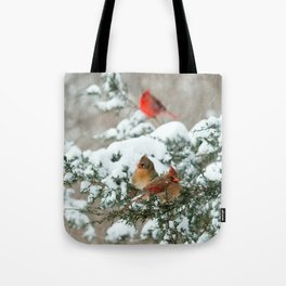 After the Snow Storm: Three Cardinals Tote Bag