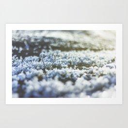 Frost Bookeh Art Print