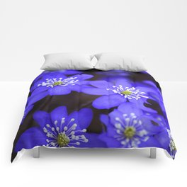 First Spring Flowers in Forest Comforters