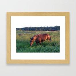 An Evening Chance Framed Art Print