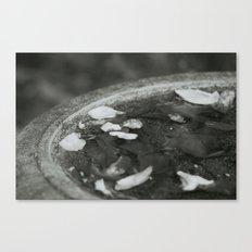 Autumn Birdbath Canvas Print