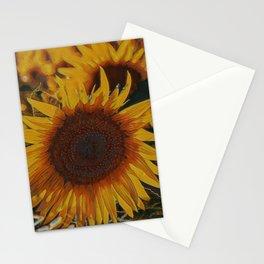 Vigor I Stationery Cards
