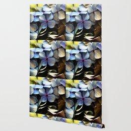 blue hydrangea flower macro Wallpaper