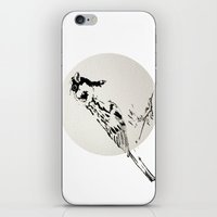 sparrow iPhone & iPod Skins featuring Sparrow by Condor