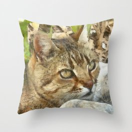 Relaxed Tabby Cat Resting In Garden Throw Pillow